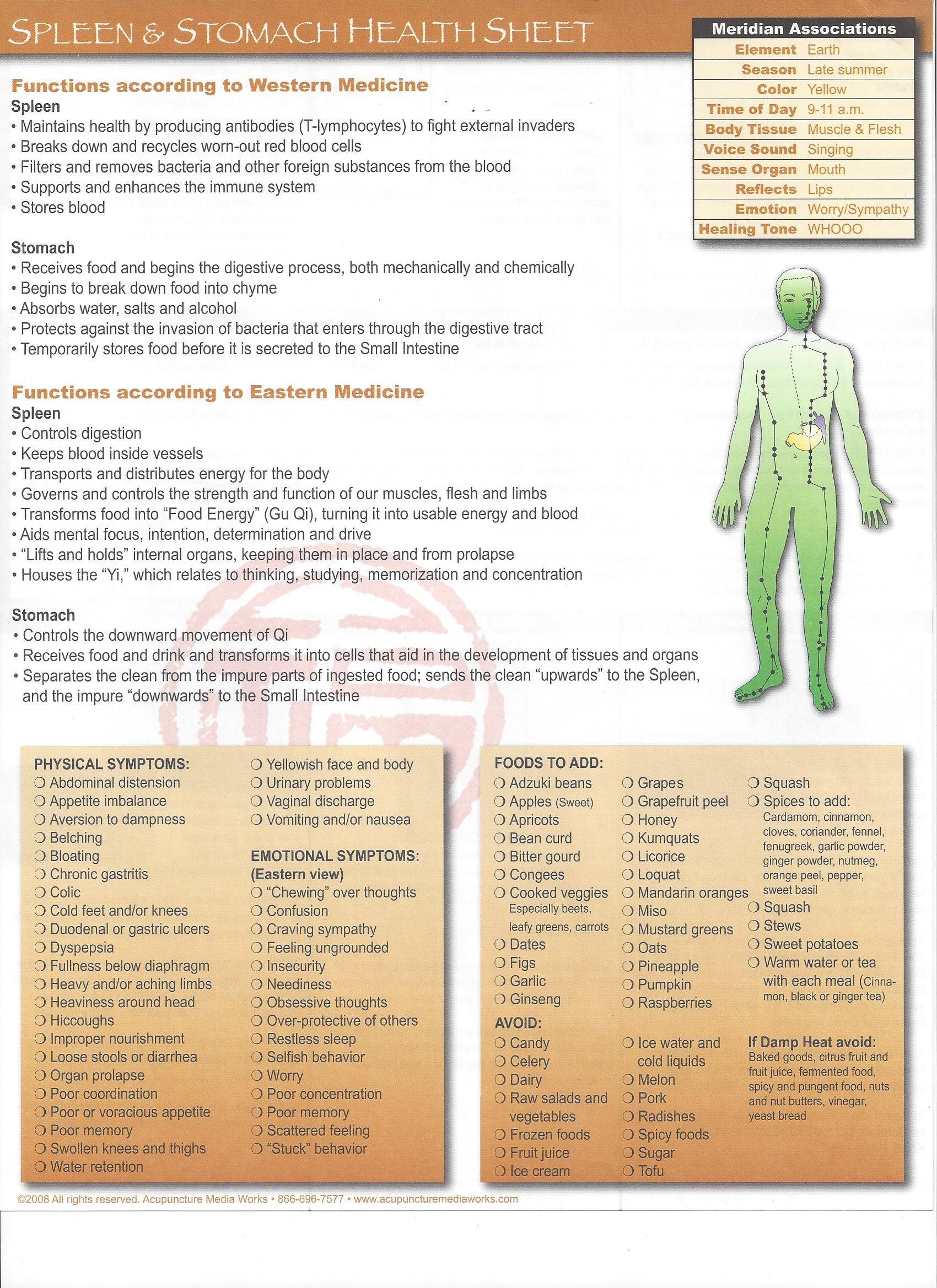 Health sheet Pancreas/Spleen Stomach. Contact Information http://www ...