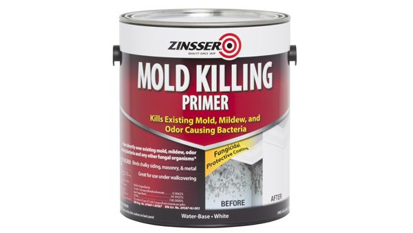 Putting Mold In Its Crosshairs This Primer Doesnt Just Cover It - Paint to cover mold in bathroom