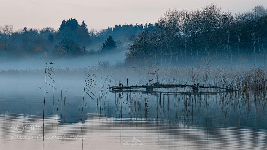 Matin brumeux - Pinned by Mak Khalaf Brume matinale sur le lac d'Etival - Jura…