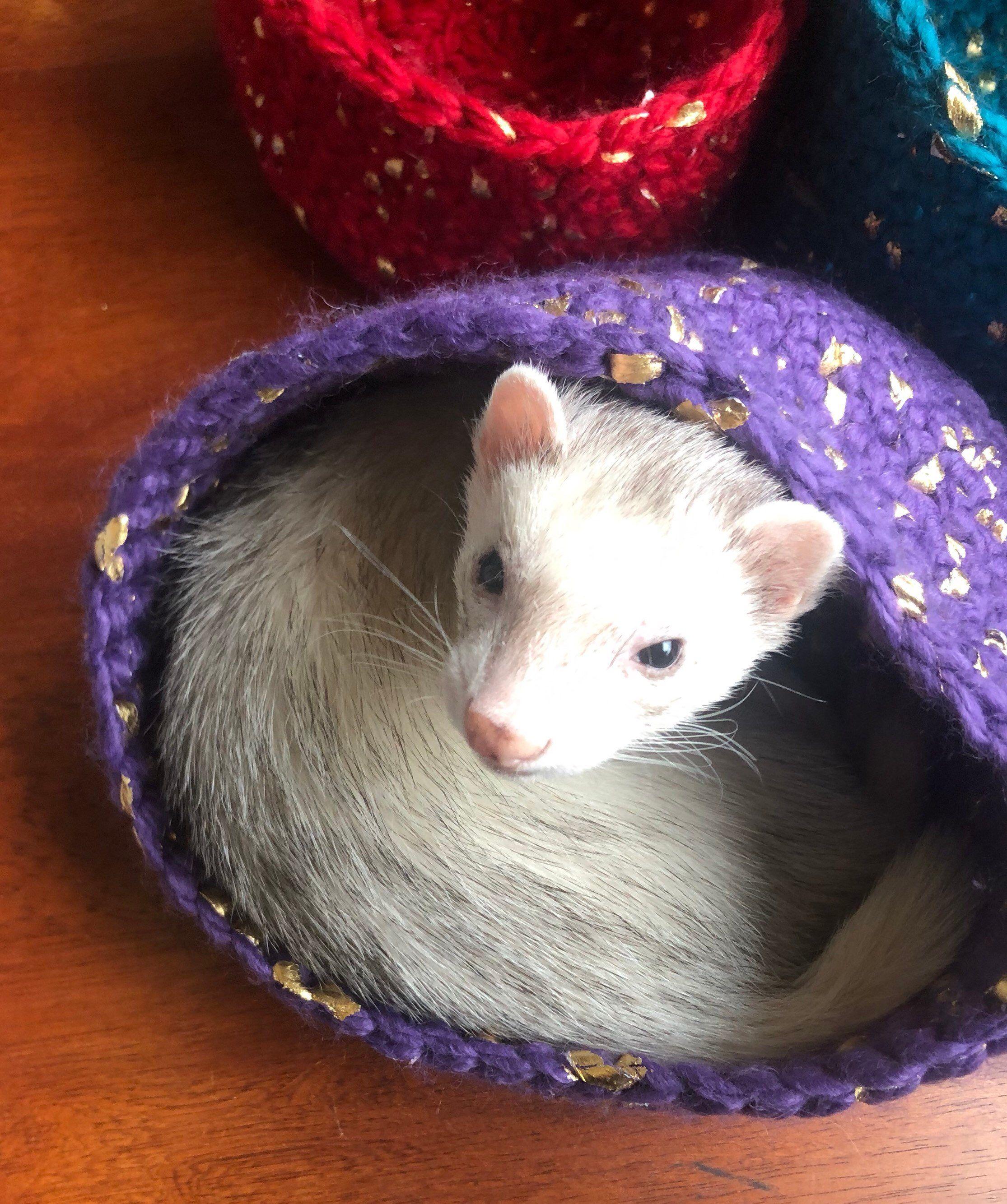 Ferret Small Animal Nesting Basket Etsy Ferret Toys Small Pets Animals