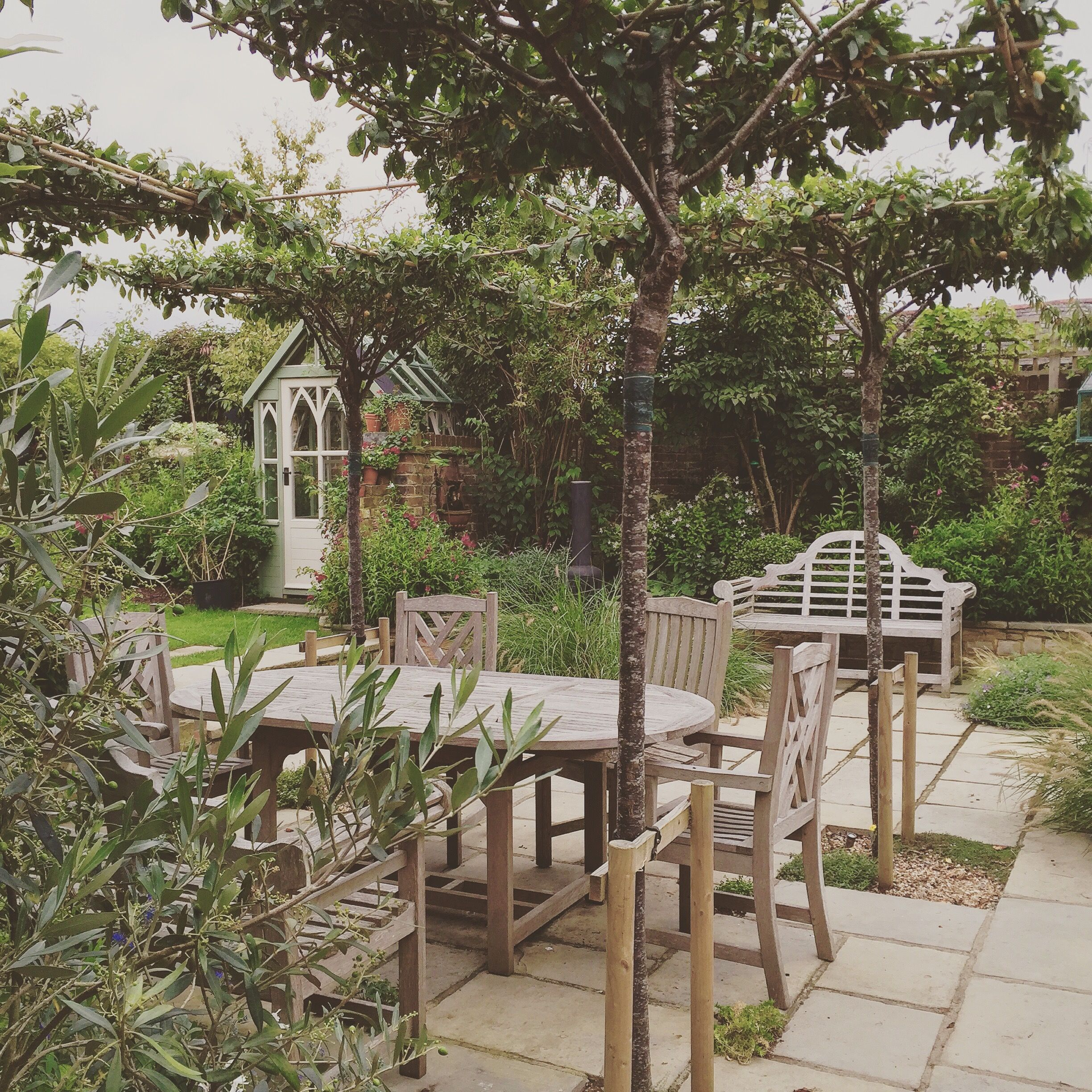 Went back to a garden I designed a year ago and was pleased how well ...