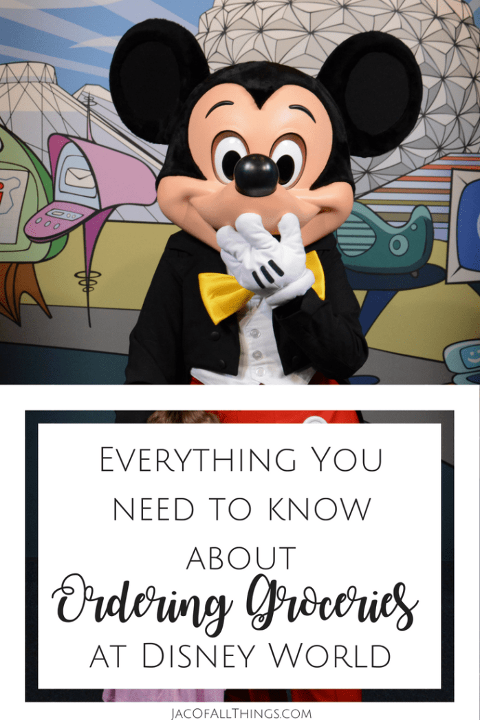 How to Order Groceries to Your Room at Disney World | Disney World