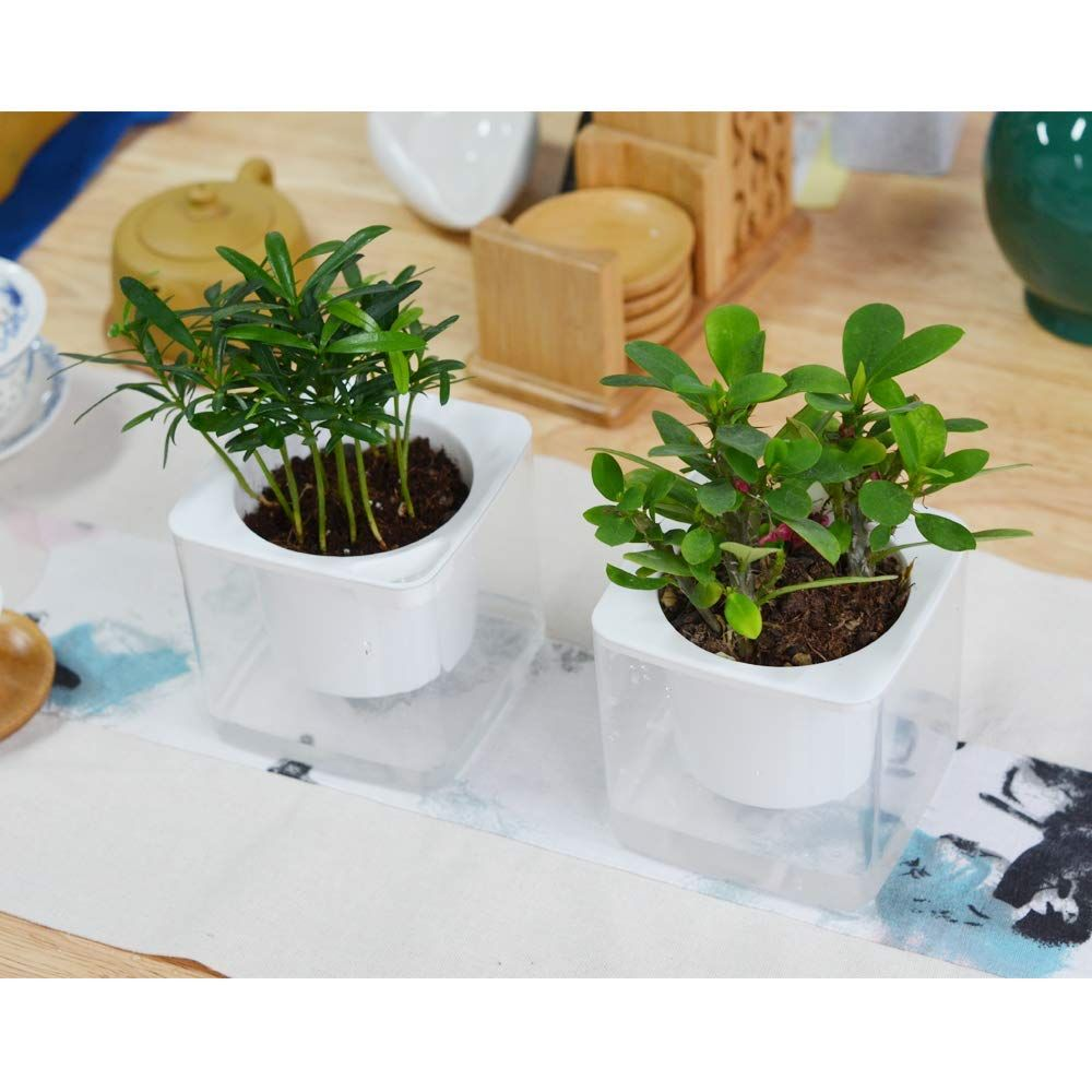 4 Inch Self Watering Planter Pots Indoor Home Garden Modern Decorative Pot For Potting S In 2020 With Images Small House Plants Self Watering Planter Planter Pots Indoor