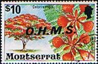 Montserrat 1976 Official OHMS Fine Used                    SG O16 Scott O19 Other West Indies and British Commonwealth Stamps HERE!