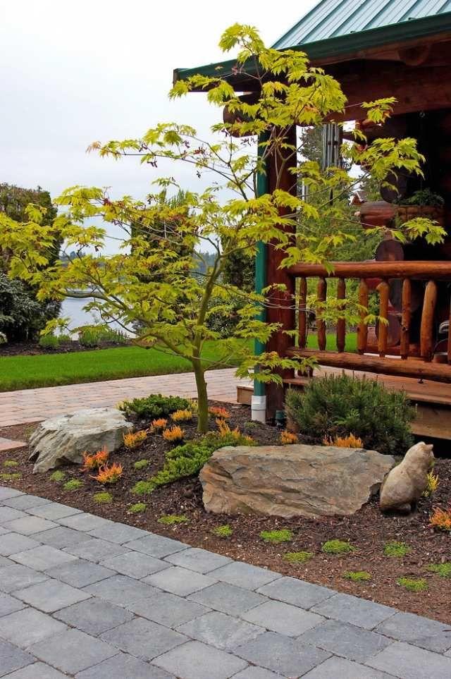 ideen baum vorgarten japaniischer ahorn bruchsteine deko | garten, Gartenarbeit ideen