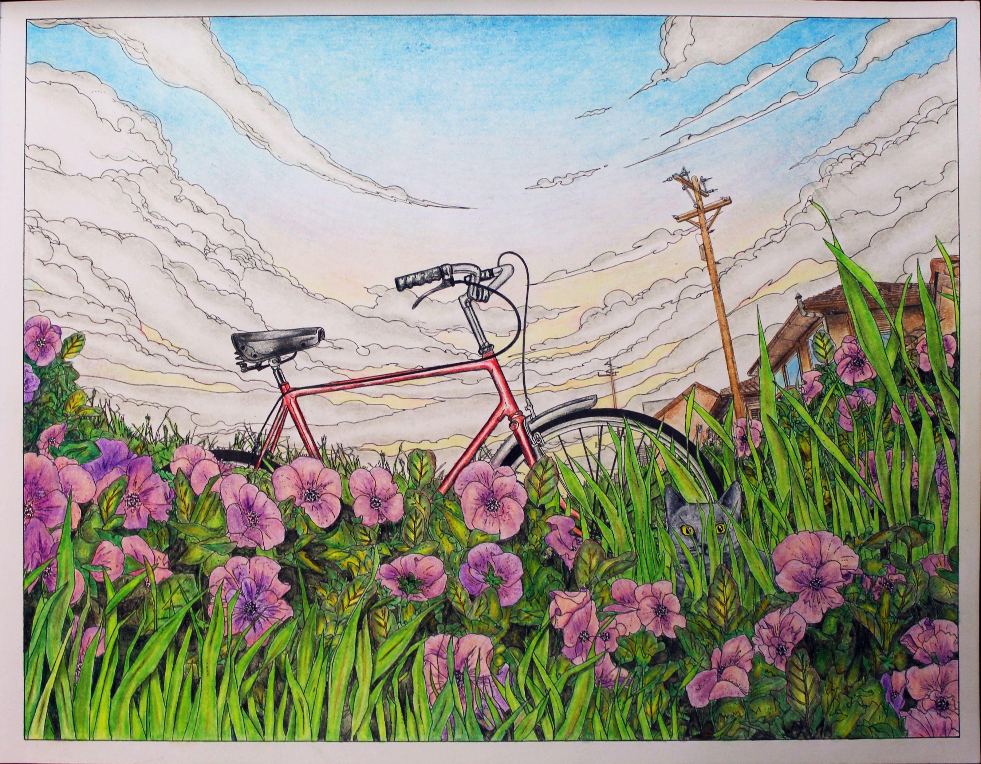 вокруг света на велосипеде раскраска путешествие на край