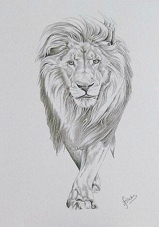 Photo of 25+ Unbelievably Realistic Lion Tattoo Drawings