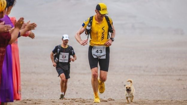 Marathon Runner Befriends Stray Dog During a Race in China