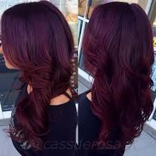 darkest plum brown age beautiful - Google Search | Hair color ...