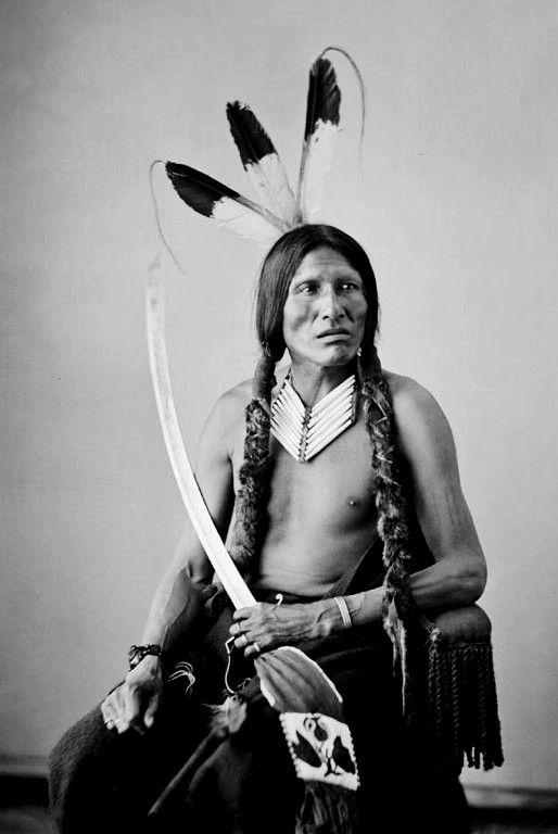 Lost Medicine, Hunkpapa Sioux. Photo taken 1872.