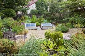 Backyard Permaculture image result for backyard permaculture design | australia