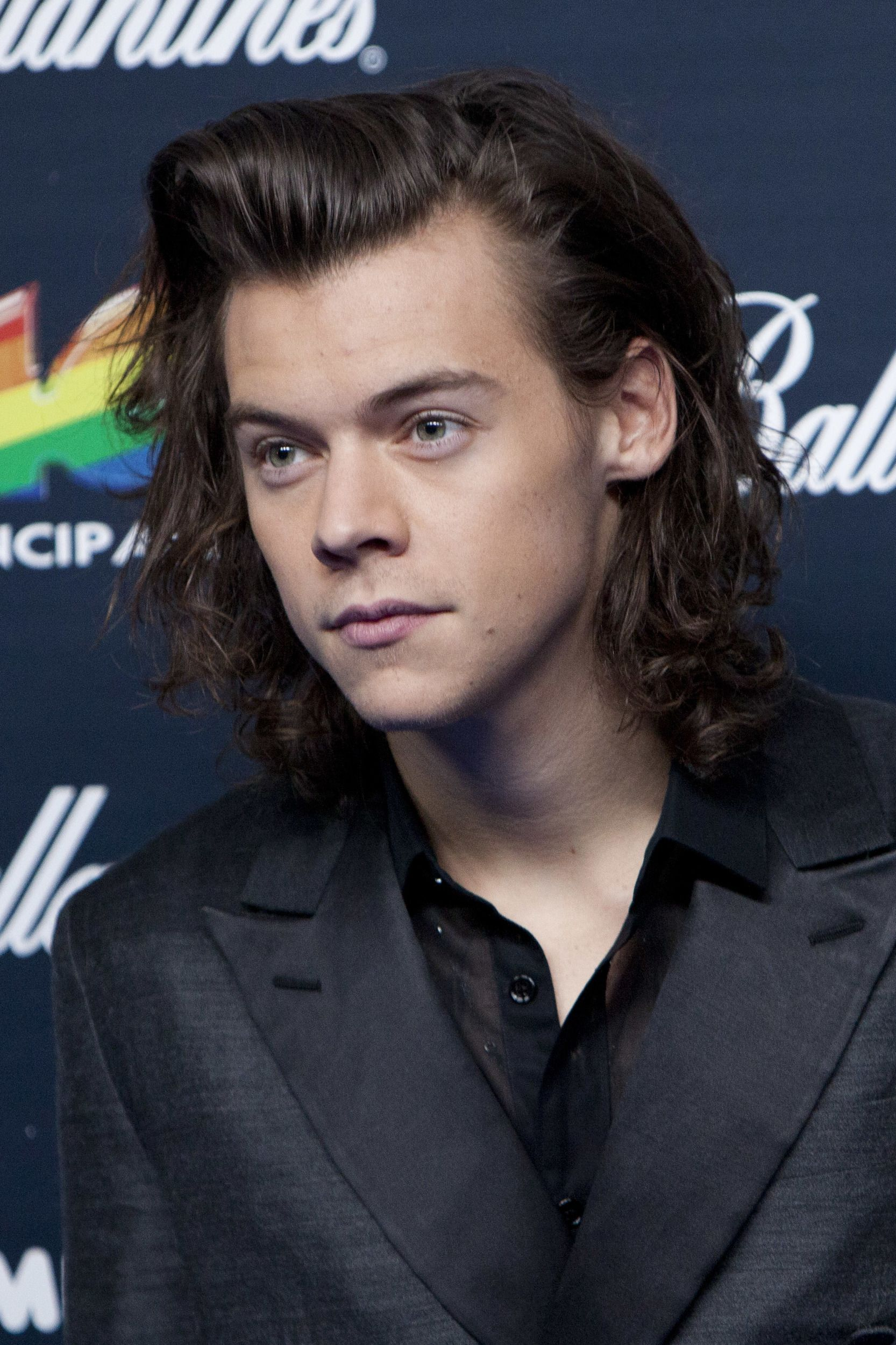 Peachy 1000 Images About Harry Styles On Pinterest Harry Edward Styles Short Hairstyles Gunalazisus