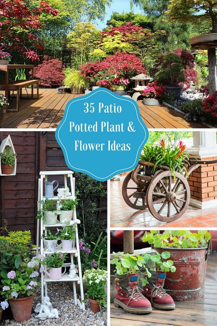35 Beautiful Patio Potted Plant And Flower Ideas.