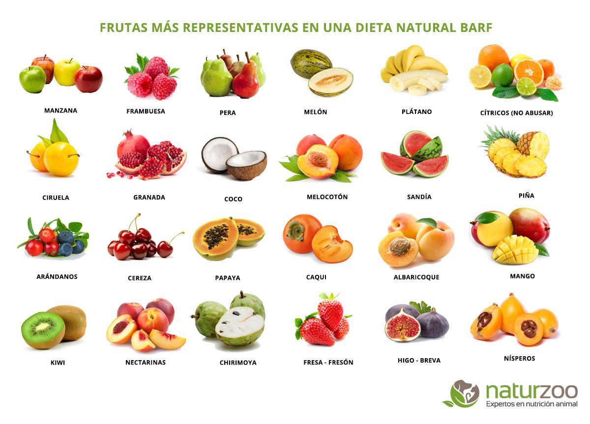 Carteles Informativos Sobre Alimentos Adecuados En Una Dieta