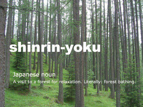 #vocabularyboost *Japanese