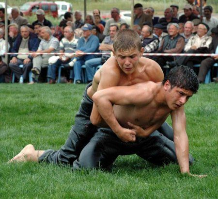 Gay men oil wrestling