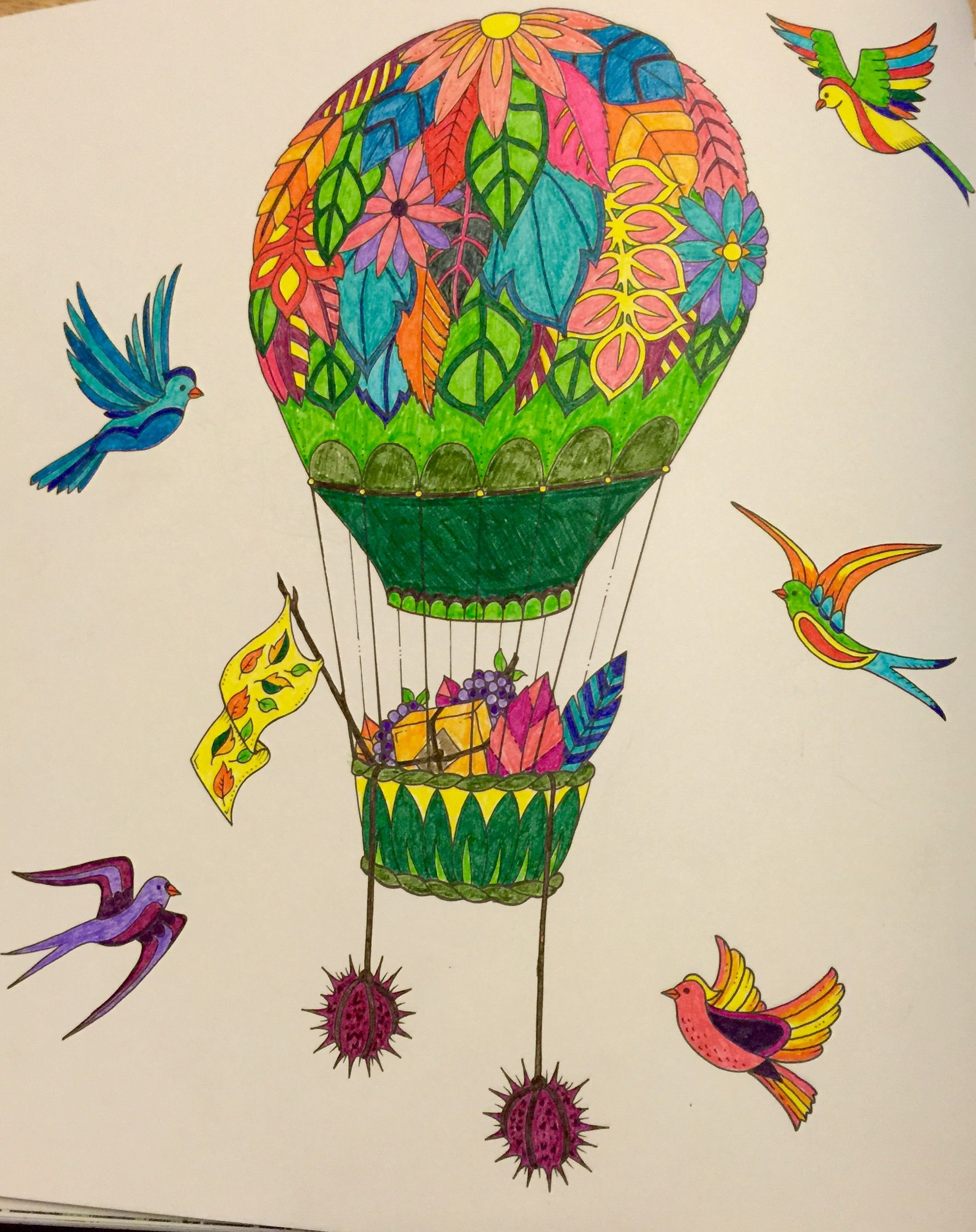 Air Balloon Enchanted Forest Coloring Book