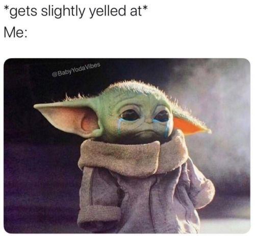 Evening Meme Roundup 30 Pics Yoda Funny Yoda Meme Yoda Wallpaper