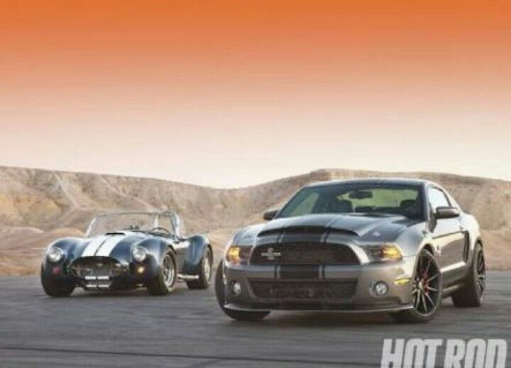 Shelby Vs Cobra Ford Mustang Shelby Mustang Shelby Shelby Gt500