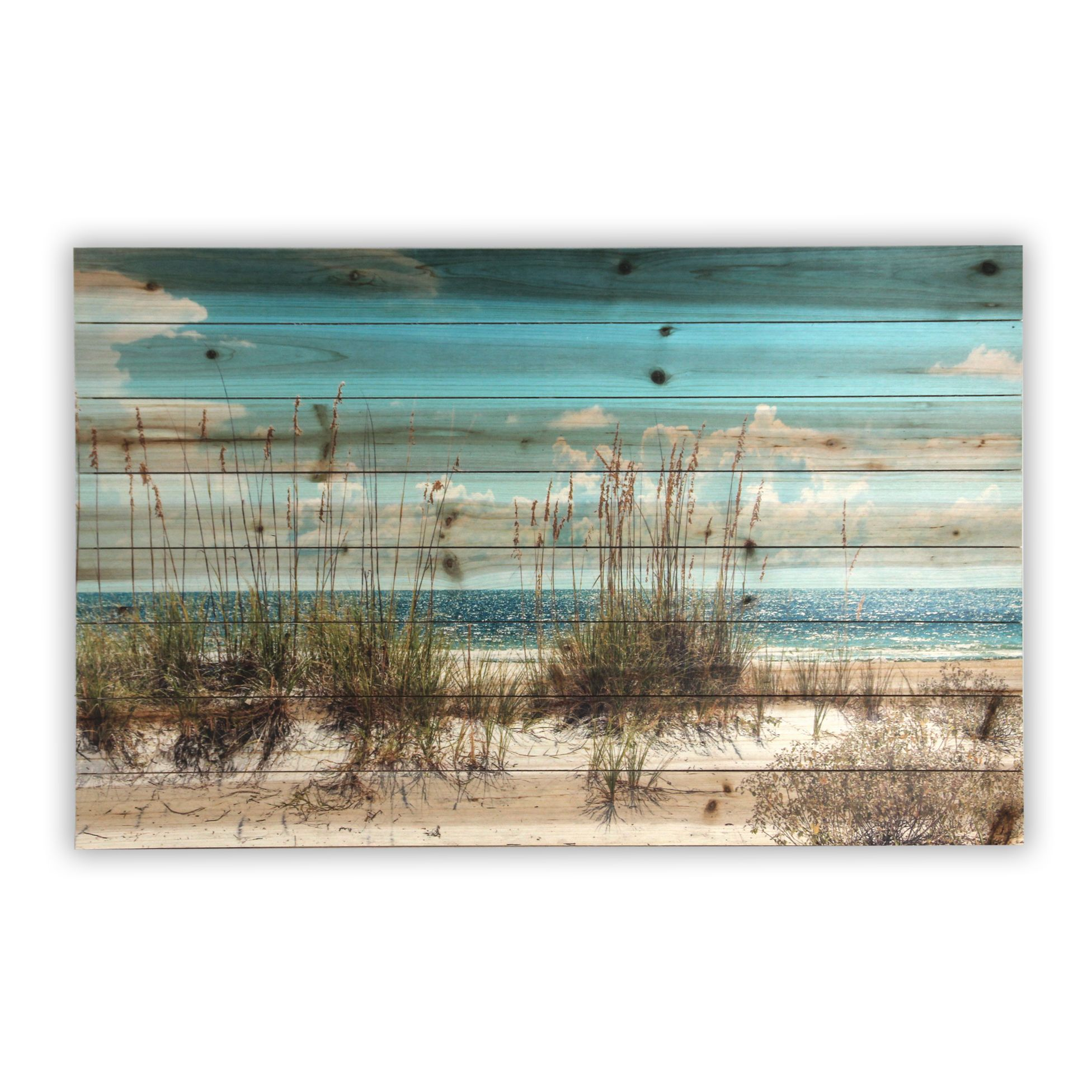 Remember the last time you were at the beach? Relive those days as you stare at your wall art that will take you back to the soft sand and breezy winds. This image will fit in your room of choice and be a true focal point to inspire the mood of the room.