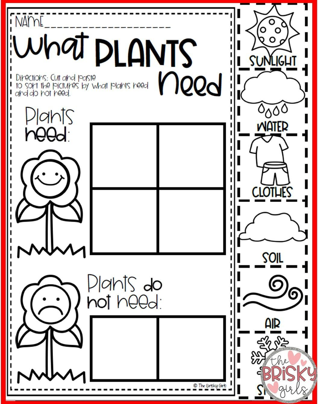 Plants All About Plants Plant Life Cycle Seed To Plant