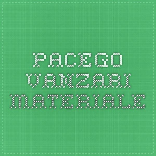 PACEGO - Vanzari materiale