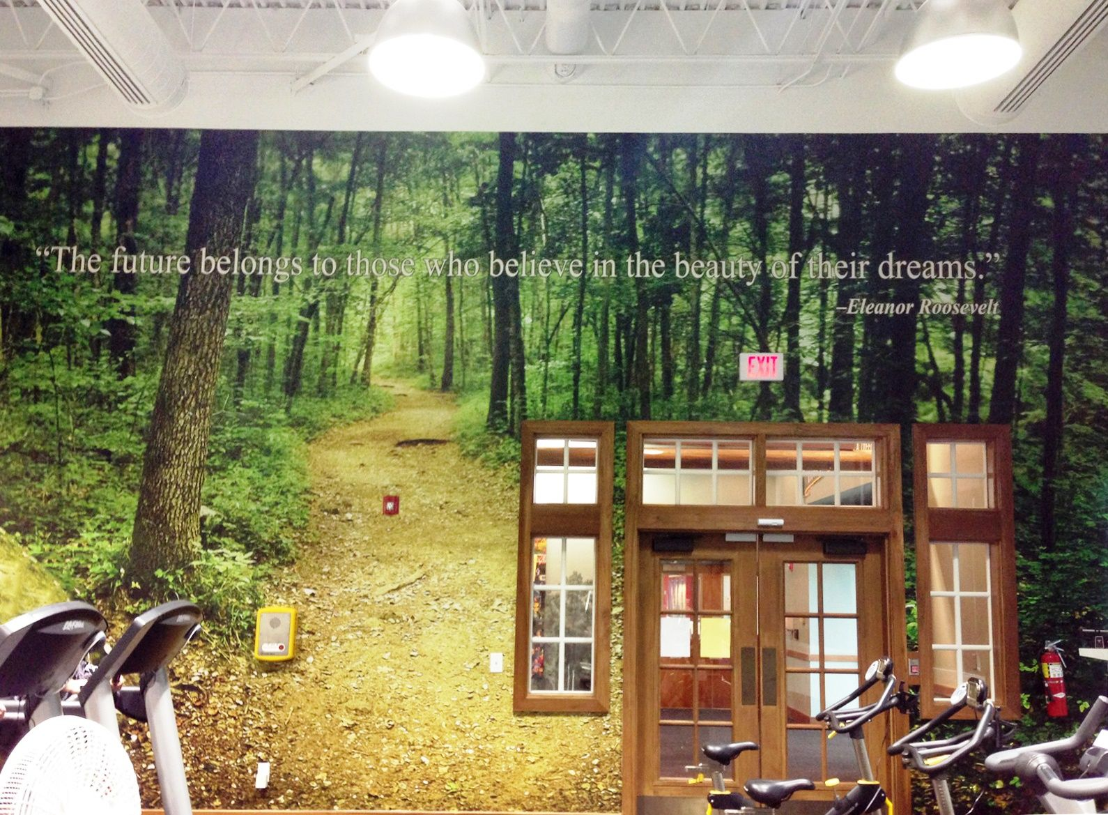 Bass Pro Shop Hq Gym Wall Murals Custom Decor Simple Wall Decor