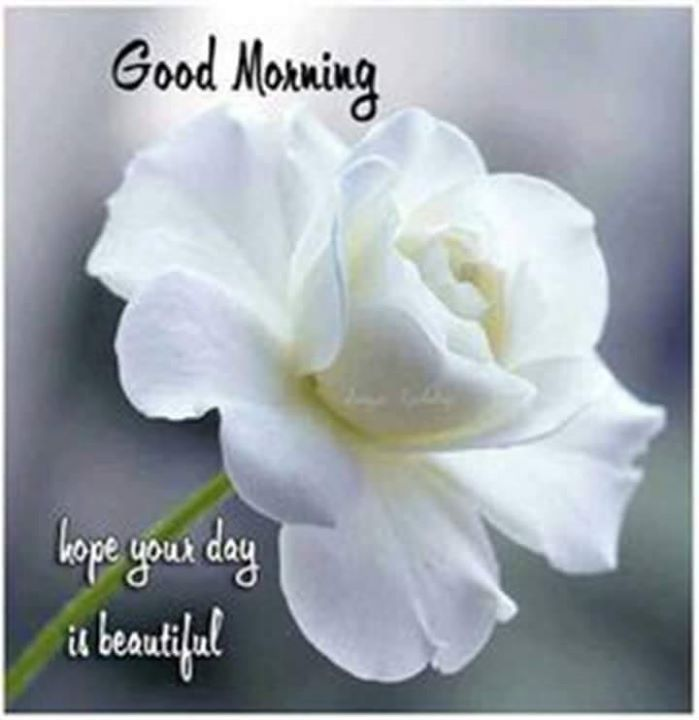 Pin by hunter july on lovely calendar pinterest morning good morning annette everyone be blessed refreshed in christ m4hsunfo
