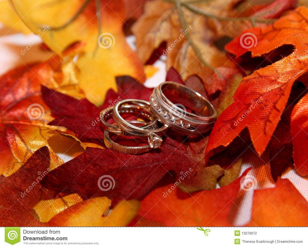 Fall Wedding Clipart Pictures Stock Photography Rings On Leaves: Country Wedding Ring Clip Art At Websimilar.org