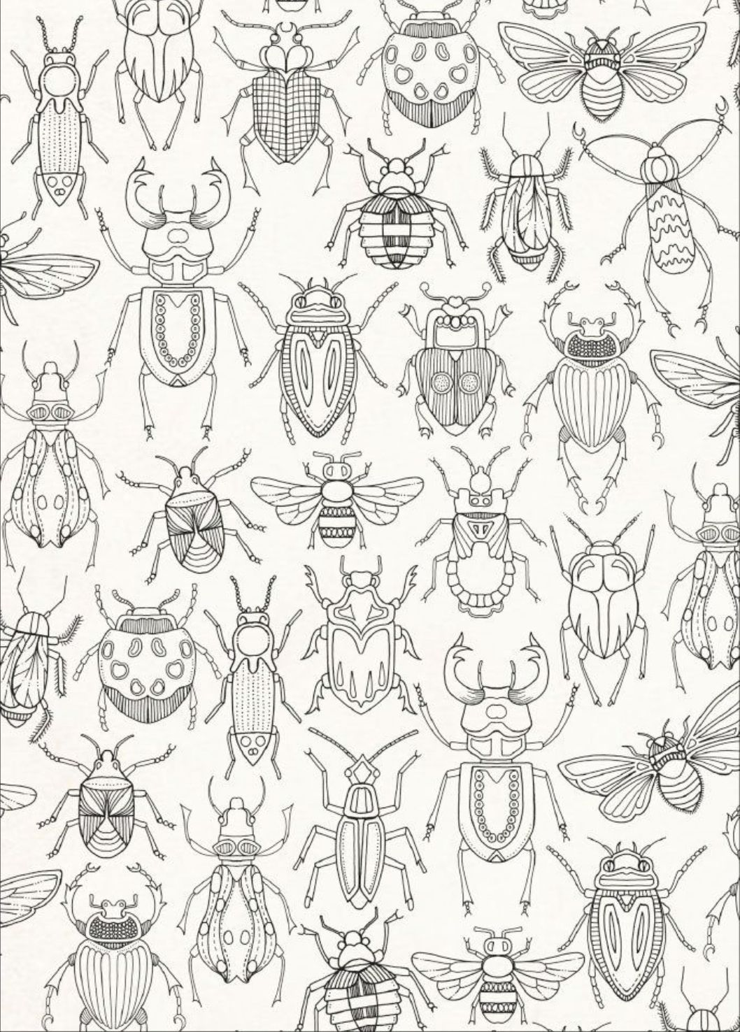 Pin By Kristina Reynolds Haney On Coloring Pages Bug Coloring Pages Bug Art Insect Art
