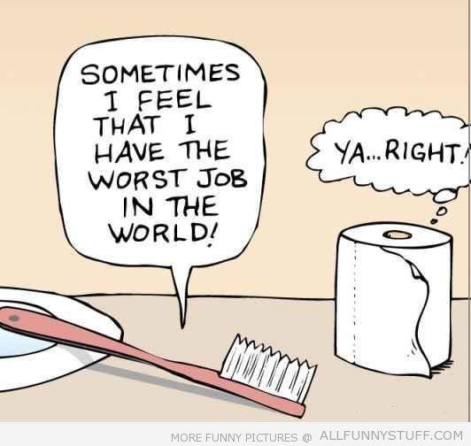 Toothbrush vs toilet paper funny ish pinterest for Bathroom jokes