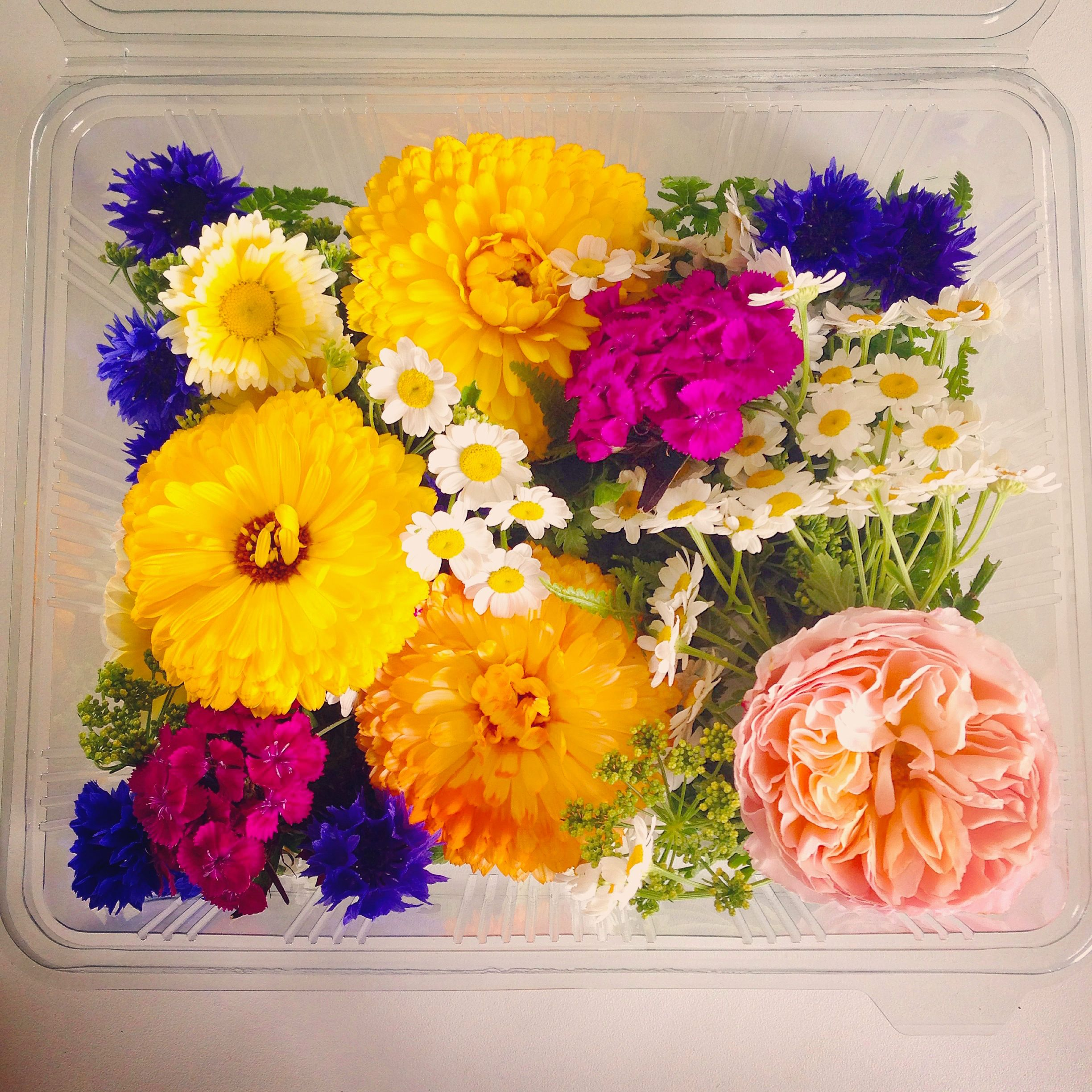 Cheap flowers by post next day delivery choice image flower cheap flowers by post next day delivery choice image flower big topper edible flower selection for izmirmasajfo