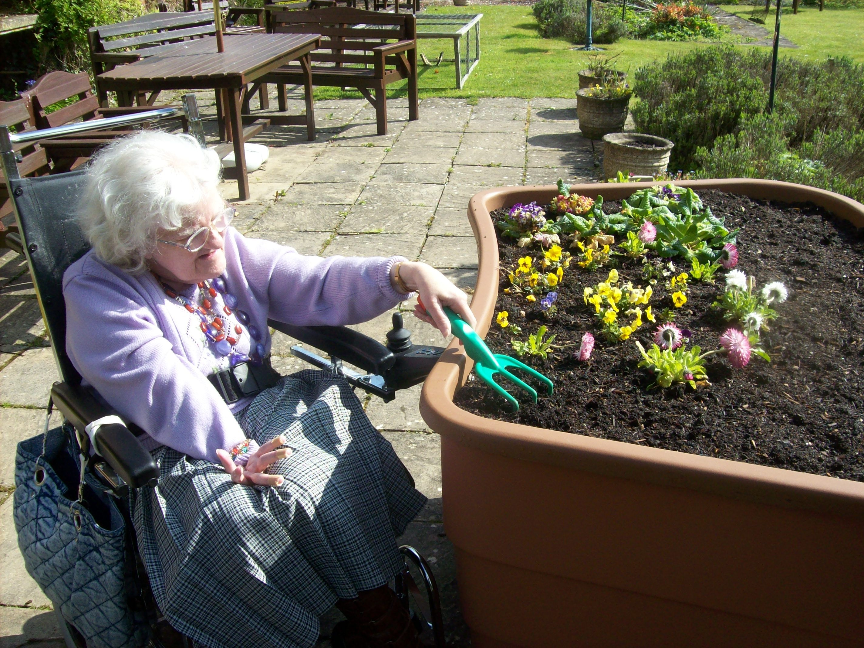 Gardening for Disabled and Elderly Horticulture therapy
