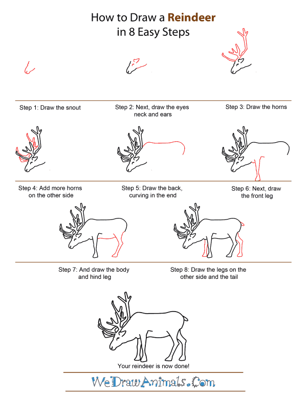 How to draw a reindeer step by art based on for How to draw a deer step by step