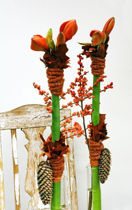 Pin van elly driesen op bloemschikken winter weihnachten deko weihnachten en weihnachtsdekoration - Dekorationsideen weihnachten ...