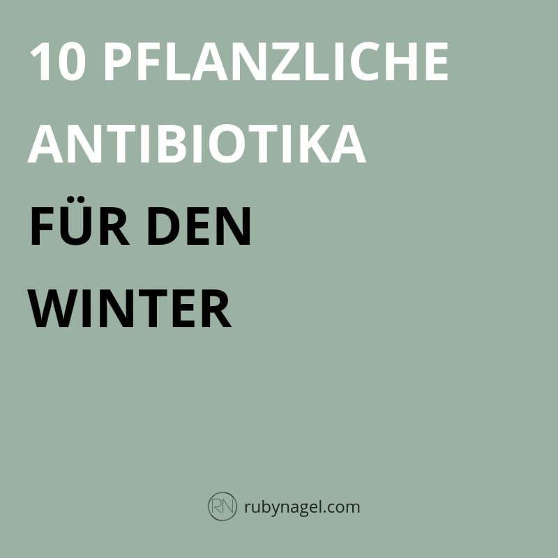 Naturliches Antibiotikum 10 Pflanzliche Antibiotika Gegen