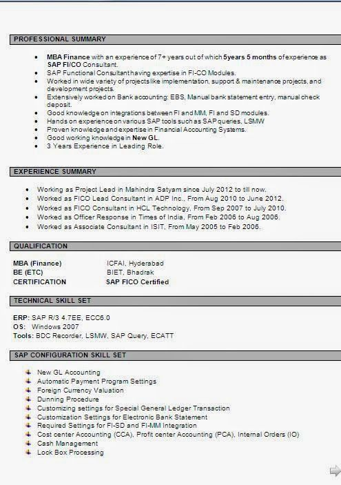 curriculum formato Sample Template Example ofExcellent Curriculum - sap fico resume sample