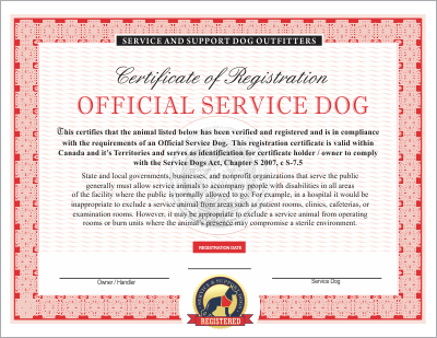 Canadian Service Dog Emotional and Therapy Service Dog