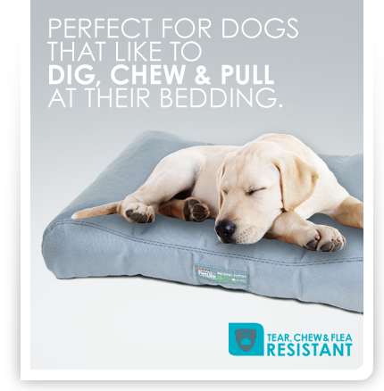 PURINA PETLIFE Tear, Chew & Flea Resistant Bedding