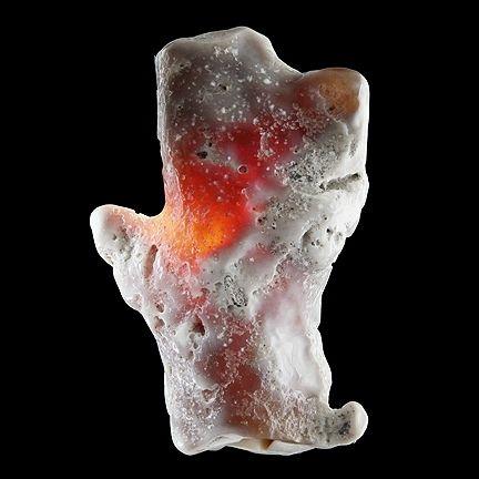 Agatized Coral (fossil/pseudomorph); Tampa Bay, Hillsborough County, Florida; 6.6 x 5.8 x 4.3 cm