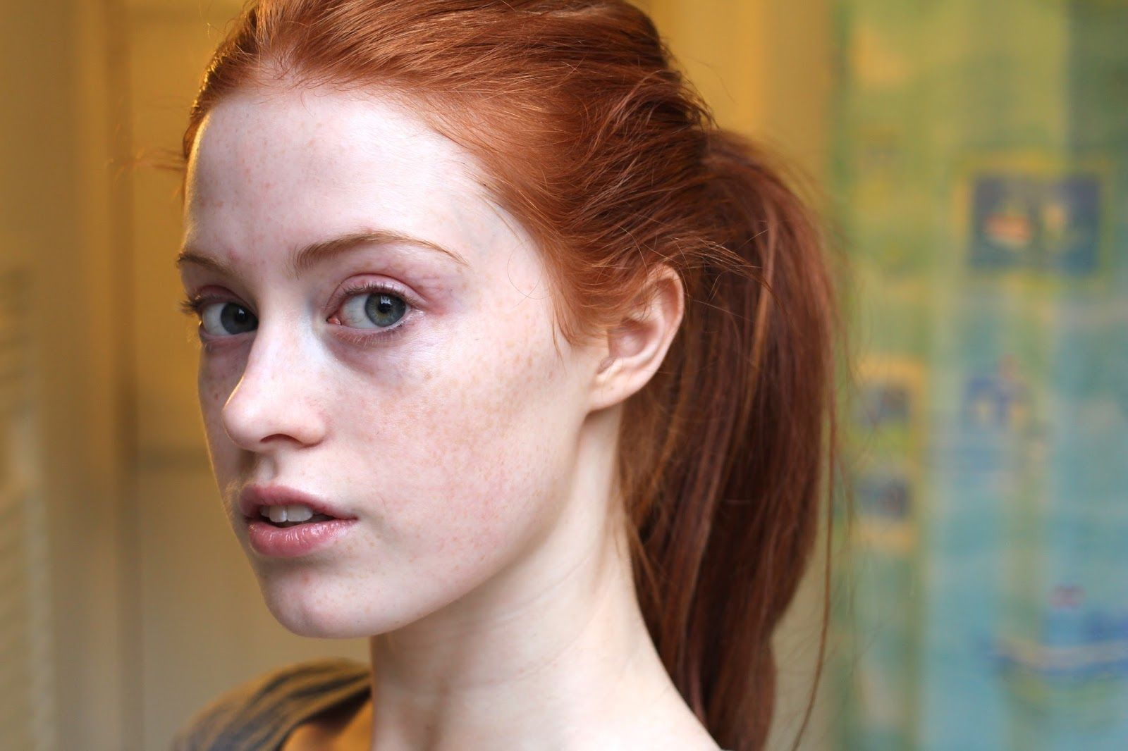 Image result for redhead without makeup   Red hair makeup, Brown ...