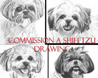 Custom Charcoal Pencil Shih Tzu Drawing - Your Dog Sketched