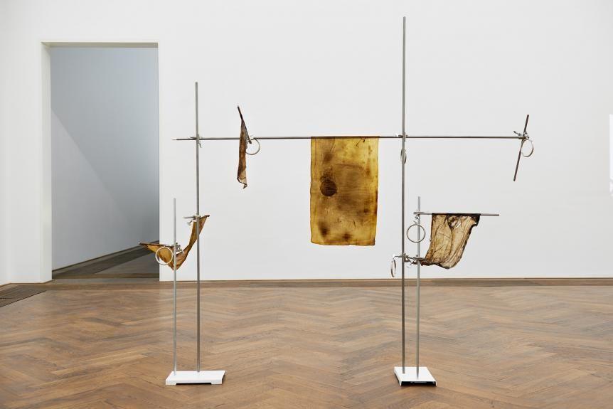 Anicka Yi in Basel Was bleibt und was wird  In der Kunsthalle Basel spielt Anicka Yi mit dem Verfall und Wuchern ihres Werks