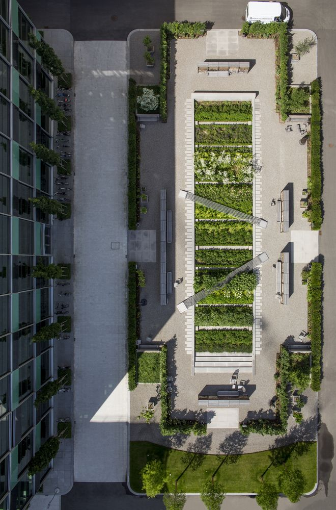 Galería de Novartis Physic Garden / Thorbjörn Andersson + Sweco architects - 21