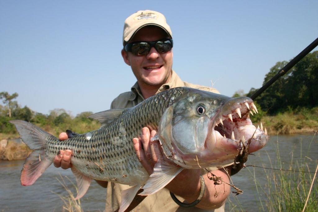 12 Ikan Air Tawar Terganas Di Dunia 12