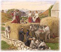 Watercolor of a haying scene in Roshven by Jemima Blackburn