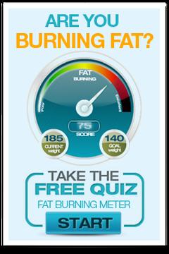 Whole foods fat burning