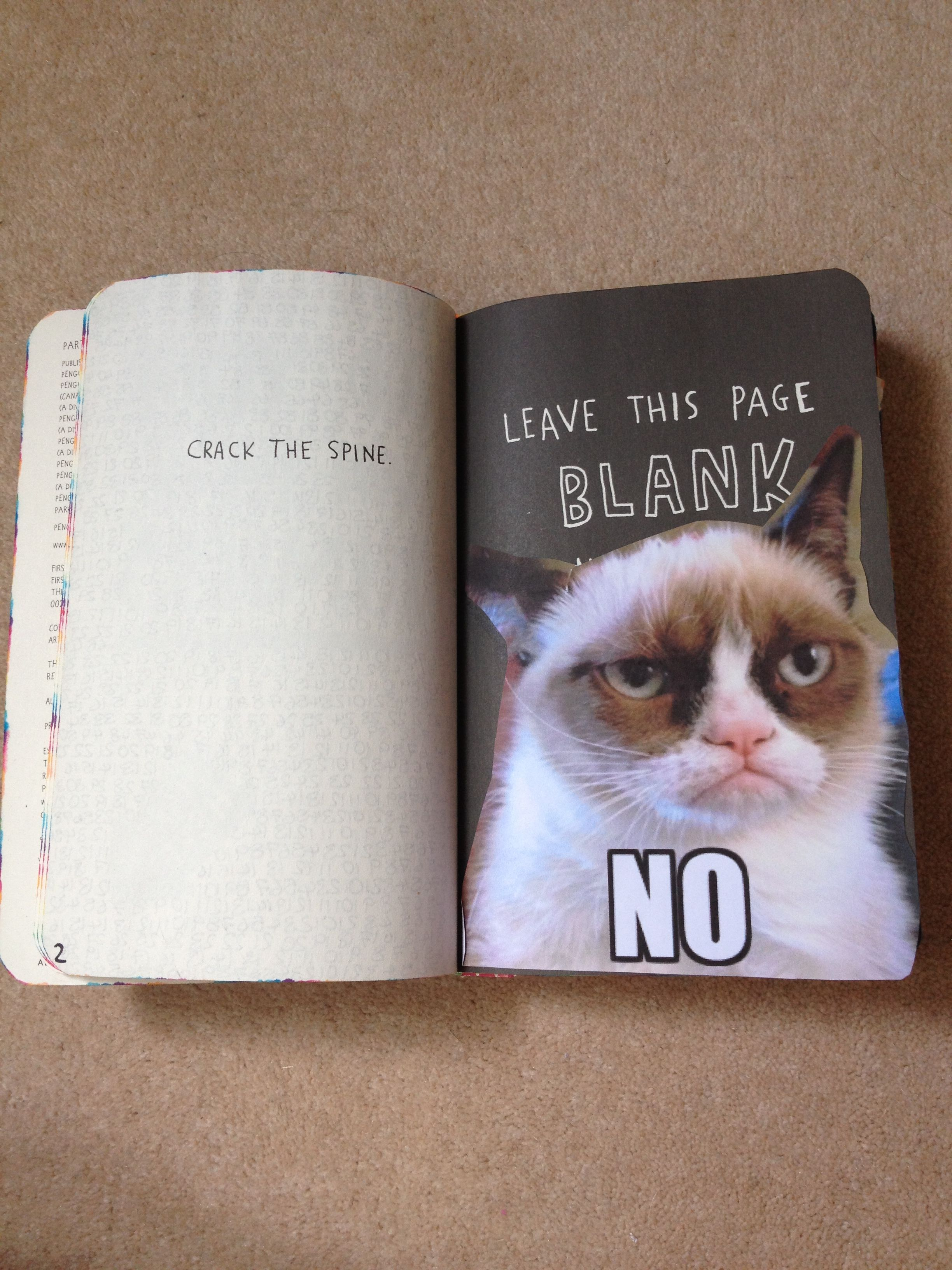 Keep this page blank (no!)...