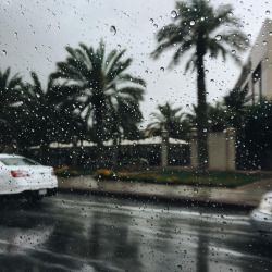 Me2day Background Photo Rain