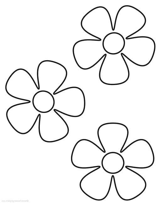 50 desenhos de flores para colorir pintar em casa estampa